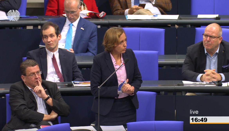 Bericht aus dem Bundestag – 30.11.2018